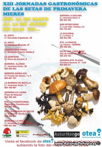 CARTEL GASTRONOMICAS SETAS PRIMAVERA 2016 (2) (Copiar)